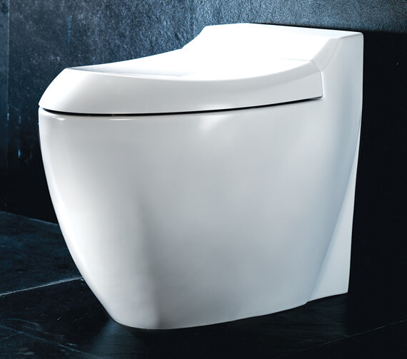 Silverdale Windsor Back To Wall Wc Pan Silwi102