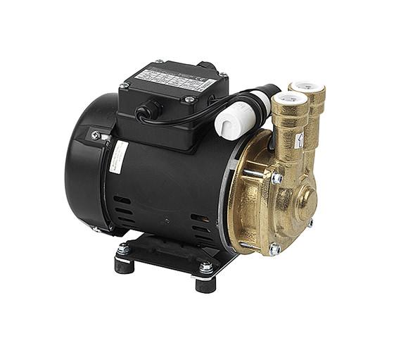 Techflow Single Impeller Pump With Positive Head 2 Bar